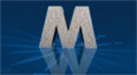 MAGELLIS CONSULTANTS
