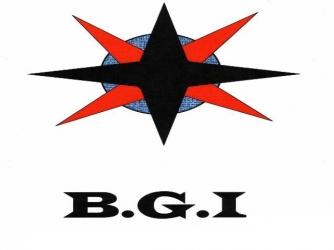 BGI-BDX CONSULTANTS