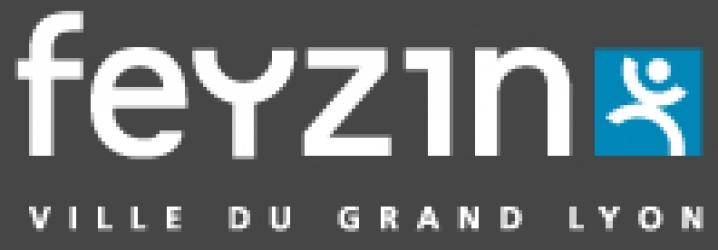FEYZIN
